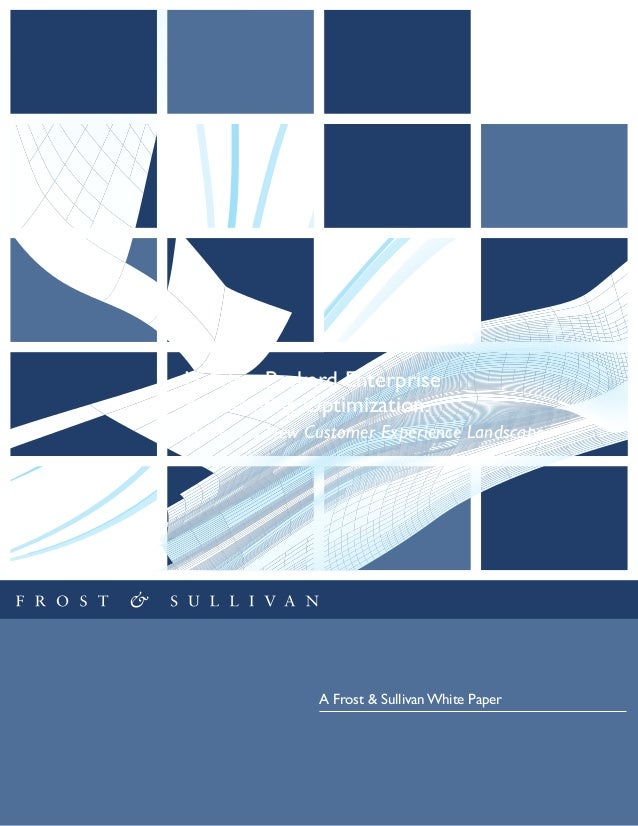 Hewlett Packard Enterprise & Marketing Optimization: A Frost & Sullivan White Paper Views of a New Customer Experience Lan...