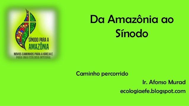 Da Amazônia ao Sínodo Caminho percorrido Ir. Afonso Murad ecologiaefe.blogspot.com