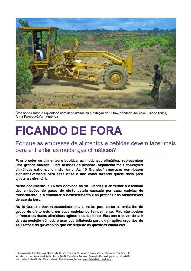 Área sendo limpa e replantada com dendezeiros na plantação de Butaw, condado de Sinoe, Libéria (2014). Anna Fawcus/Oxfam A...