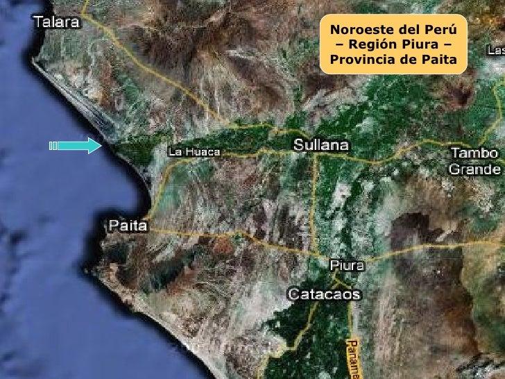 Nuevo Manglar en La Nueva Bocana de Vichayal-Paita-Piura Slide 2