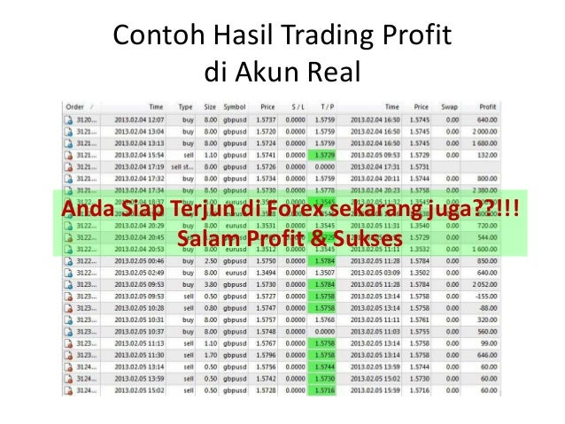 Forex akun mini
