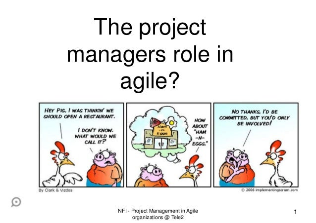 Project Management In Agile Organizations - The Project Managers Role