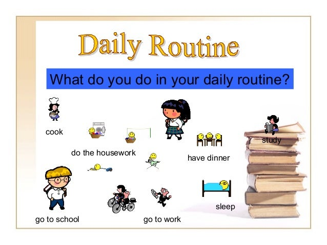 cook go to school go to work have dinner study do the housework sleep What do you do in your daily routine?