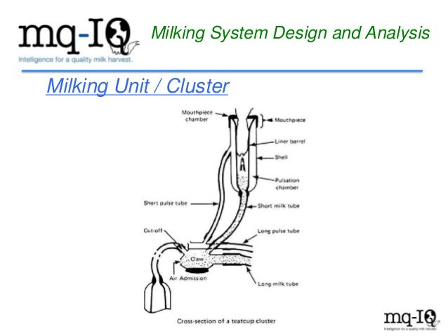 Milking System Design And Analysis