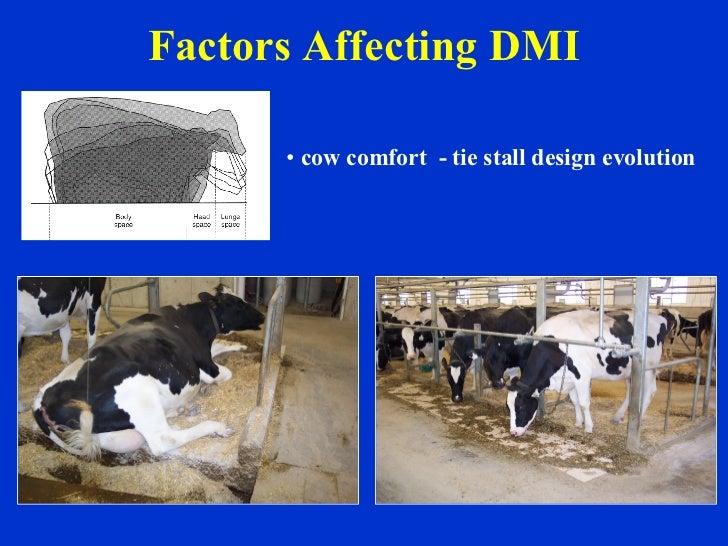 Factors Affecting DMI <ul><li>cow comfort  - tie stall design evolution </li></ul>