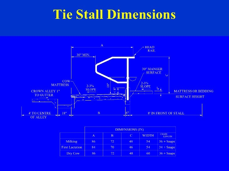 Tie Stall Dimensions