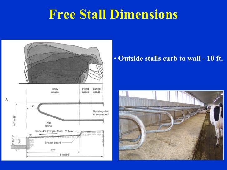 Free Stall Dimensions <ul><li>Outside stalls curb to wall - 10 ft. </li></ul>