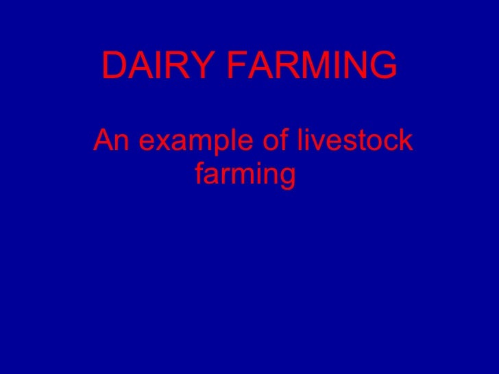 An example of livestock farming   DAIRY FARMING