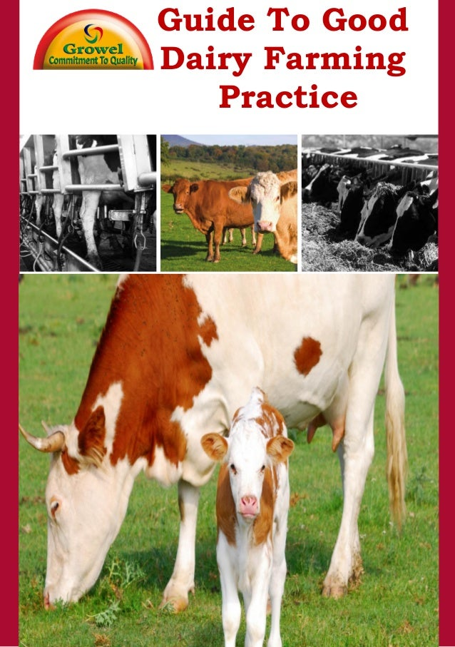 dairy farming practice guide rh slideshare net guide to good dairy farming practice fao Image of Good Farming Practices in Maryland