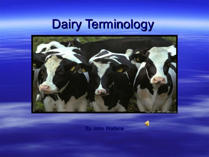Dairy Terminology By John Wallace