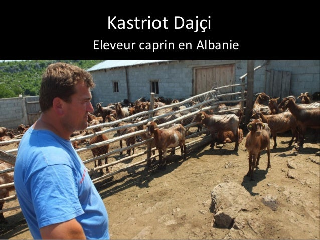 Kastriot Daj�i Eleveur caprin en Albanie