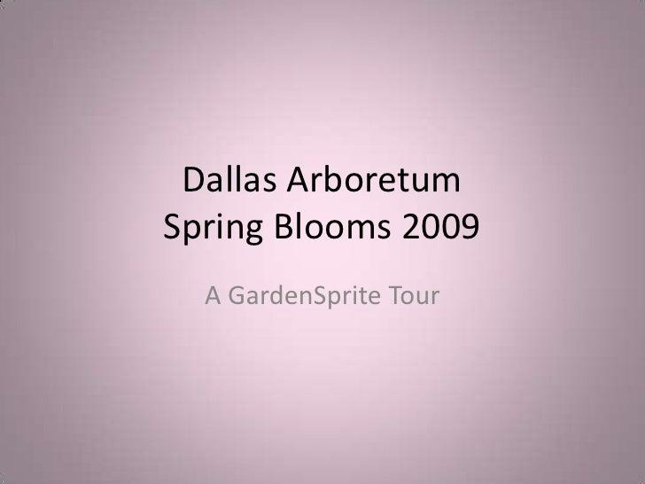Dallas ArboretumSpring Blooms 2009<br />A GardenSprite Tour<br />