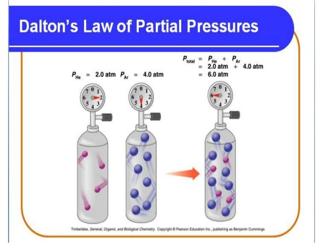 dalton law