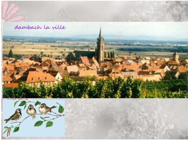 Ces photos ont été prises lors de notre voyage en Alsace  Photos de lulu47  A bientot