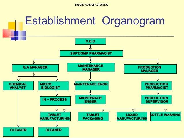 sales organogram