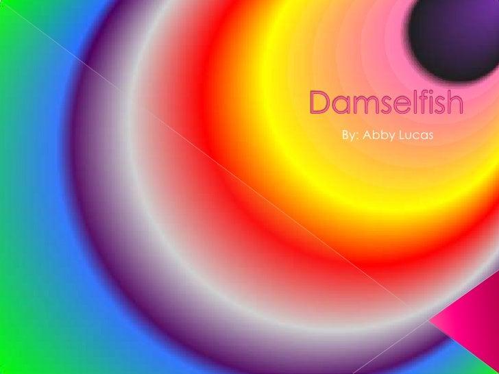 Damselfish<br />By: Abby Lucas<br />
