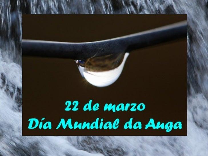 Curiosidades da auga     Alejandra Casalderrey Somoza           Iria Bugallo Chaves