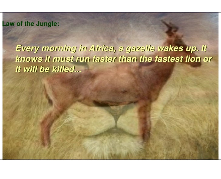 Law of the Jungle:       Every morning in Africa, a gazelle wakes up. It     knows it must run faster than the fastest lio...