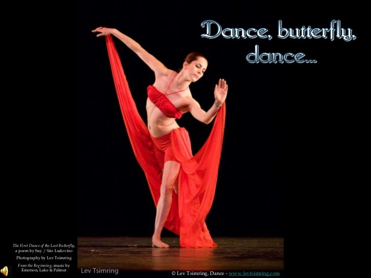 The First Dance of the Last Butterfly, a poem by Suy / São Ludovino<br />Photography by Lev Tsimring<br />From the Beginni...