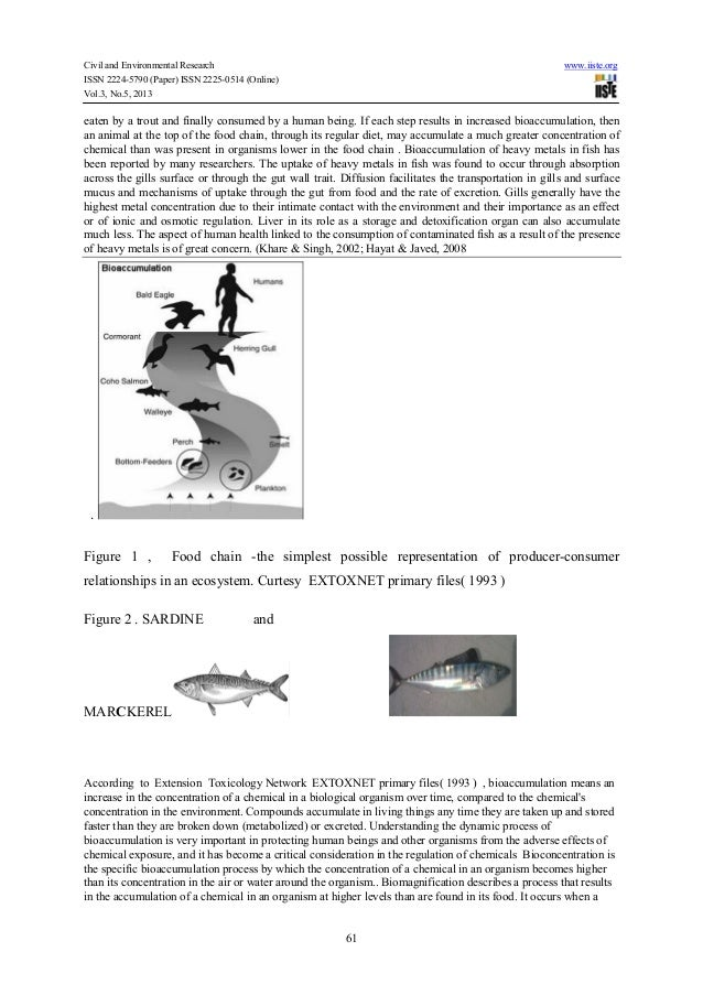 essay on bioaccumulation The database web of science was searched on april 26, 2017 for papers focused on joint toxicity and bioaccumulation of nps and co-contaminants, with the search topics being 'nanoparticle or nanomaterial', 'contaminant or pollutant or heavy metal', and 'toxicity or bioaccumulation or bioavailability'.