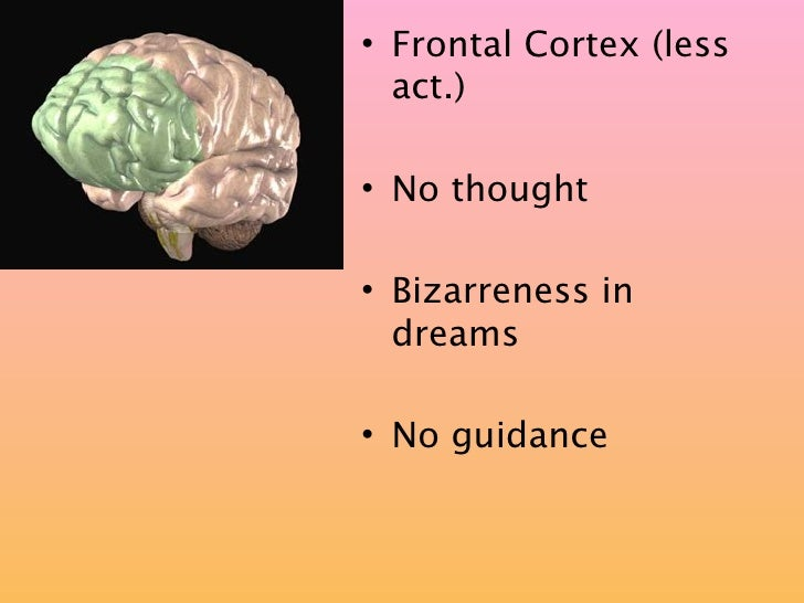 • Frontal Cortex (less   act.)  • No thought  • Bizarreness in   dreams  • No guidance