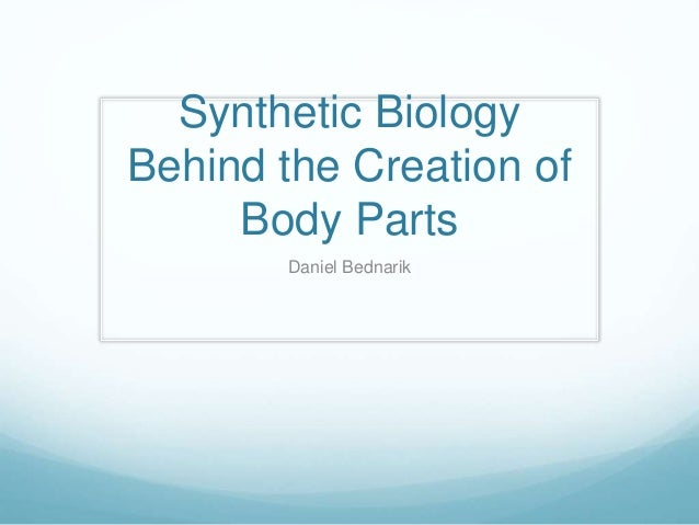 Synthetic Biology Behind the Creation of Body Parts Daniel Bednarik