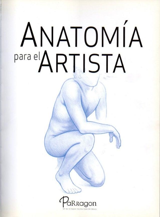 Excepcional Anatomía De Los Artistas Composición - Anatomía de Las ...