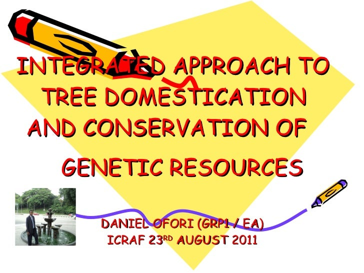 INTEGRATED APPROACH TO TREE DOMESTICATION AND CONSERVATION OF  GENETIC RESOURCES  DANIEL OFORI (GRP1 / EA) ICRAF 23 RD  AU...