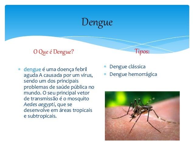 Dengue O Que é Dengue?  dengue é uma doença febril aguda A causada por um vírus, sendo um dos principais problemas de saú...