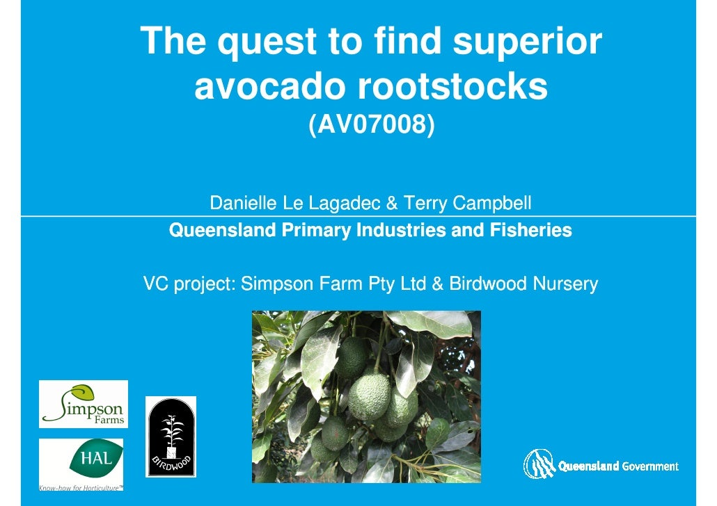 The quest to find superior   avocado rootstocks                   (AV07008)       Danielle Le Lagadec & Terry Campbell   Q...