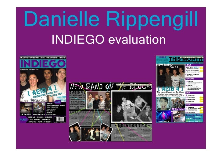 Danielle Rippengill    INDIEGO evaluation
