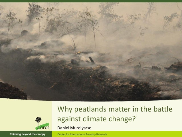 Why peatlands matter in the battle against climate change? Daniel Murdiyarso