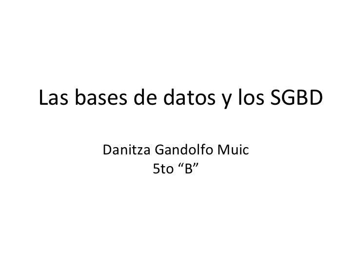 """Las bases de datos y los SGBD      Danitza Gandolfo Muic             5to """"B"""""""