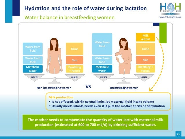 INPUTS LOSSES 13 Hydration and the role of water during lactation Water balance in breastfeeding women The mother needs to...