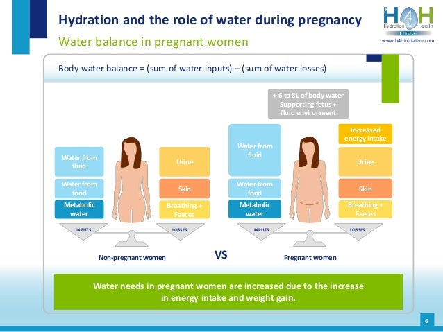 INPUTS LOSSESINPUTS LOSSES Hydration and the role of water during pregnancy Water balance in pregnant women Body water bal...