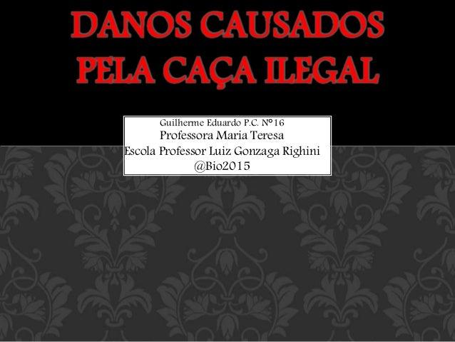 Guilherme Eduardo P.C. N°16 Professora Maria Teresa Escola Professor Luiz Gonzaga Righini @Bio2015 DANOS CAUSADOS PELA CAÇ...