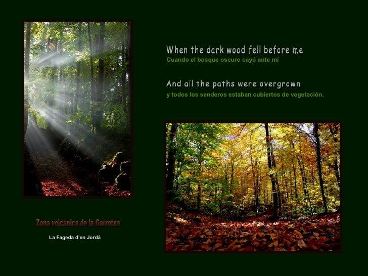 La Fageda d'en Jordá Cuando el bosque oscuro cayó ante mí When the dark wood fell before me And all the paths were overgro...