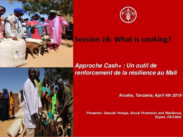 Session 16: What is cooking? Approche Cash+ : Un outil de renforcement de la résilience au Mali Arusha, Tanzania, April 4t...
