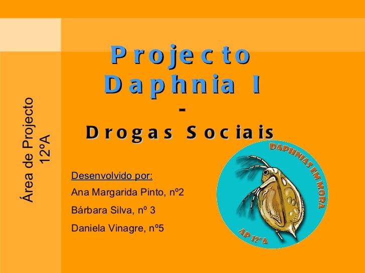 Projecto Daphnia I - Drogas Sociais Desenvolvido por: Ana Margarida Pinto, nº2 Bárbara Silva, nº 3 Daniela Vinagre, nº5 Ár...
