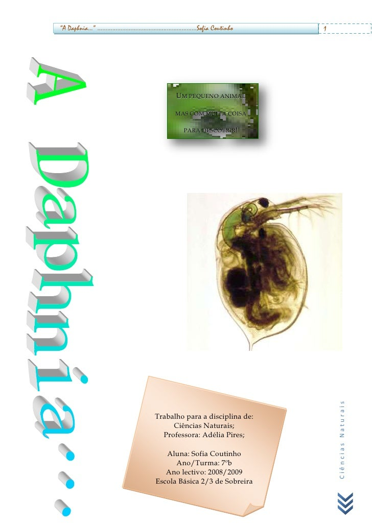 daphnia coursework Daphnia lab report ioral responses of daphnia to the color and intensity of finally, with our aboriginal friends and colleagues,  biology daphnia coursework.