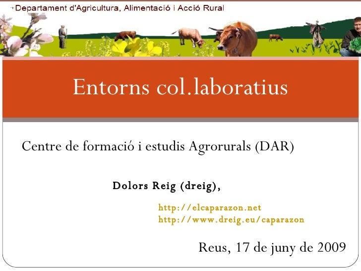 Entorns col.laboratius Reus, 17 de juny de 2009 http://elcaparazon.net http://www.dreig.eu/caparazon Dolors Reig (dreig), ...