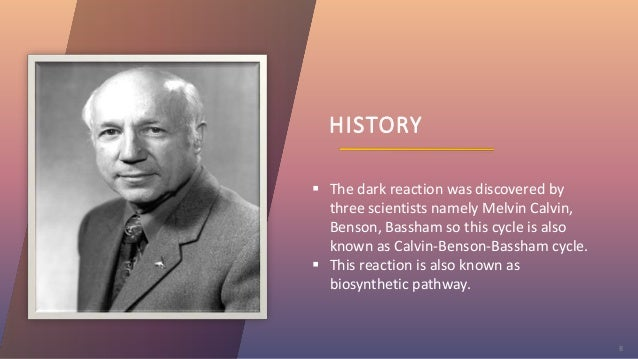 HISTORY 8  The dark reaction was discovered by three scientists namely Melvin Calvin, Benson, Bassham so this cycle is al...