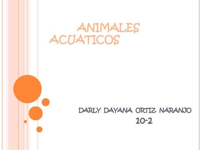 ANIMALES ACUATICOS  DARLY DAYANA ORTIZ NARANJO  10-2