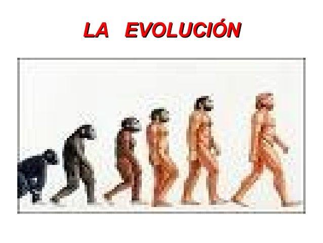 LA EVOLUCIÓNLA EVOLUCIÓN