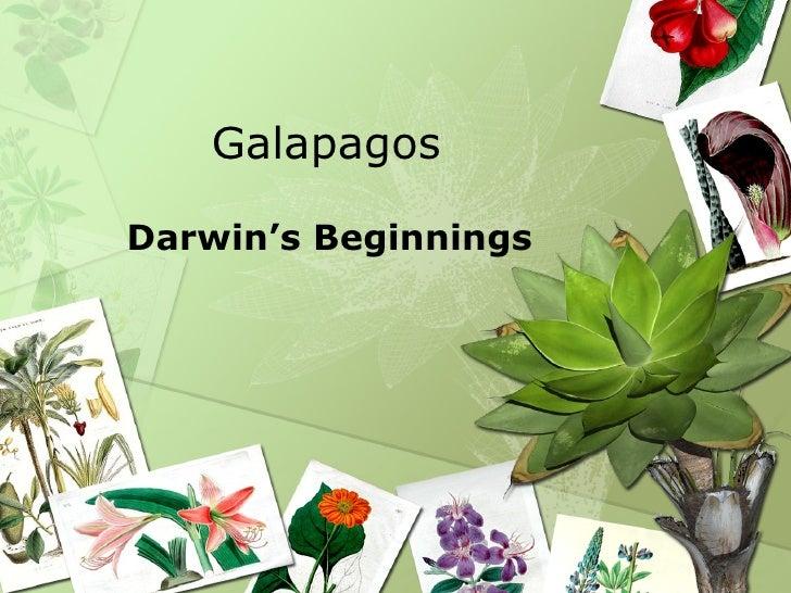 Galapagos Darwin's Beginnings