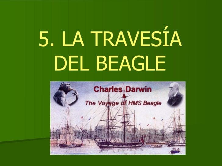 5. LA TRAVESÍA DEL BEAGLE