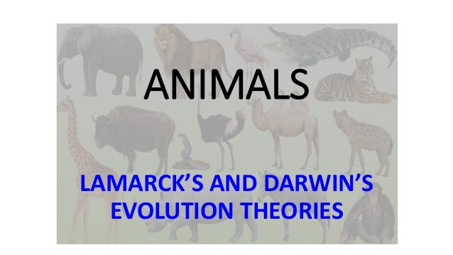 ANIMALS LAMARCK'S AND DARWIN'S EVOLUTION THEORIES