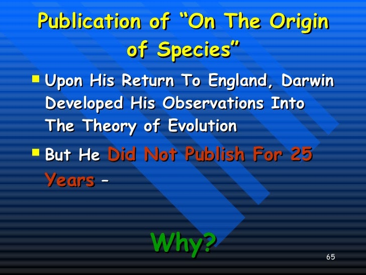 a comparison between the idea of creationism and the theories of evolution Intelligent design vs evolutionary theory: a brief comparison april 19, 2008 by roderick i charles darwin's theory of evolution, called natural selection, stated that different species originated from shared ancestors, with the differences in the organisms being caused by adaptations to different environments.