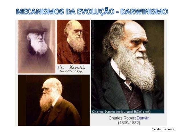 Darwinismo 11ºbg Slide 2