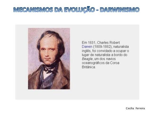 Darwinismo 11ºbg Slide 3